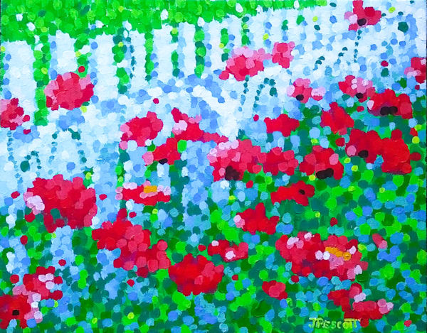 Picket Fence Poppies