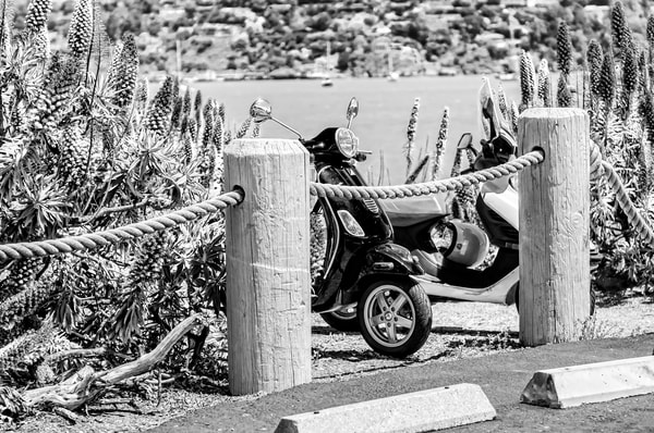 Island Scooters in Key Biscayne, BW