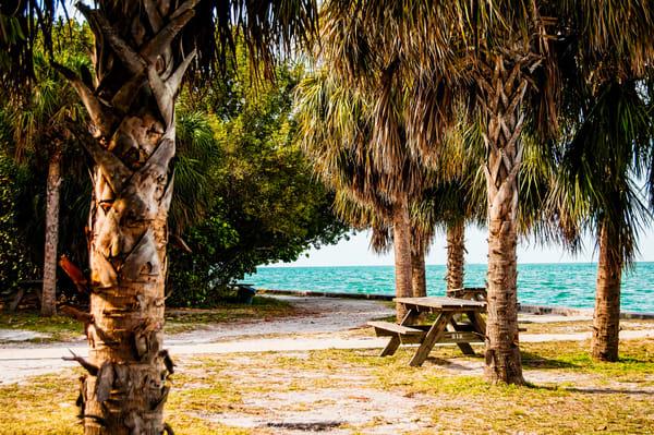 Deserted Crandon Park, Key Biscayne