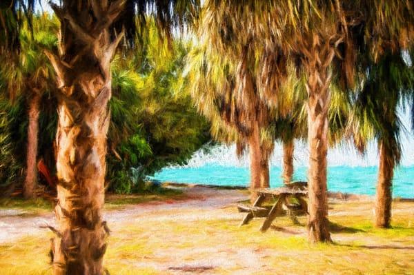 Deserted Crandon Park, Key Biscayne Turner-style