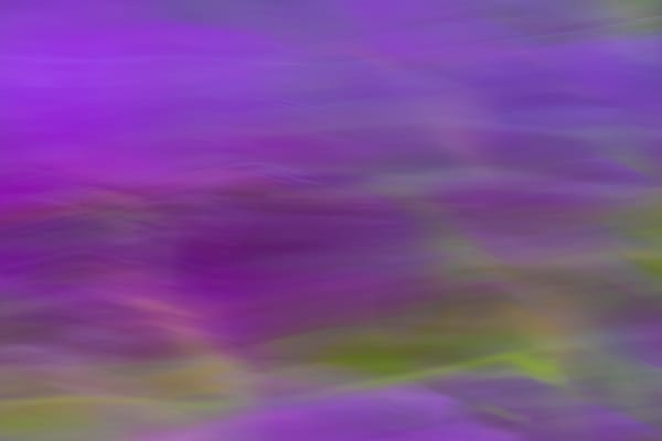 ArtShow 003 AirQuality