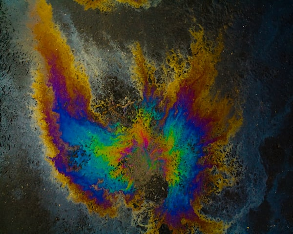 Oil On Pavement:Find Your Wings|Fine Art Photography|Oil On Pavement|Todd Breitling Art|