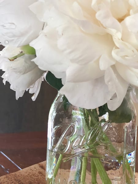 White Peonies: Jar of Blooms