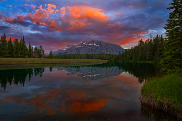 Summer comes to Banff |Canadian Rockies|Banff National Park| Rocky Mountains