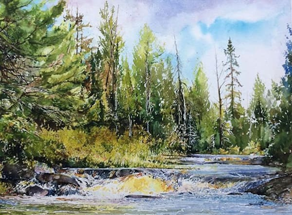 Waterfalls Algonquin Park by Anthony Saldutto | SavvyArt Market original painting