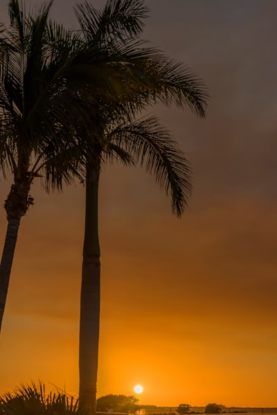 Tropical Sunset 4 - Sunset Art | William Drew