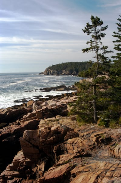 Acadia 365