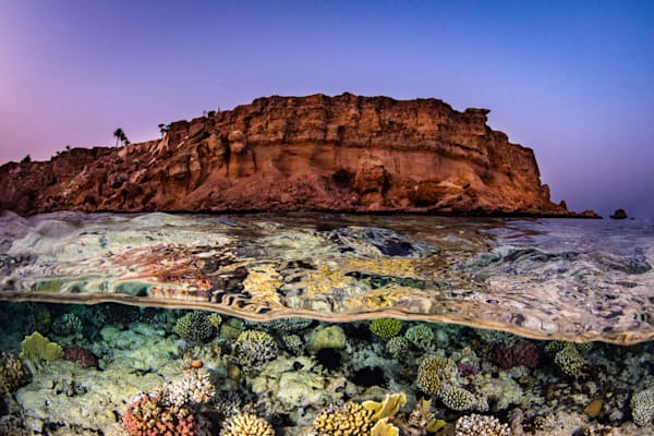 Ras Katy is a coral garden park in the Red Sea available as a fine art photograph for sale