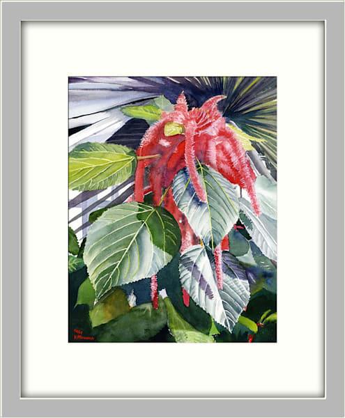 Red Chenille Garden Botanical Flower Original Fine Art