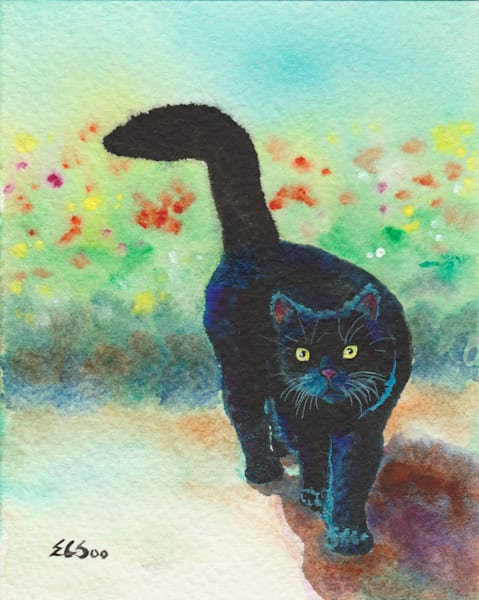 Black Cat Strolls In The Garden