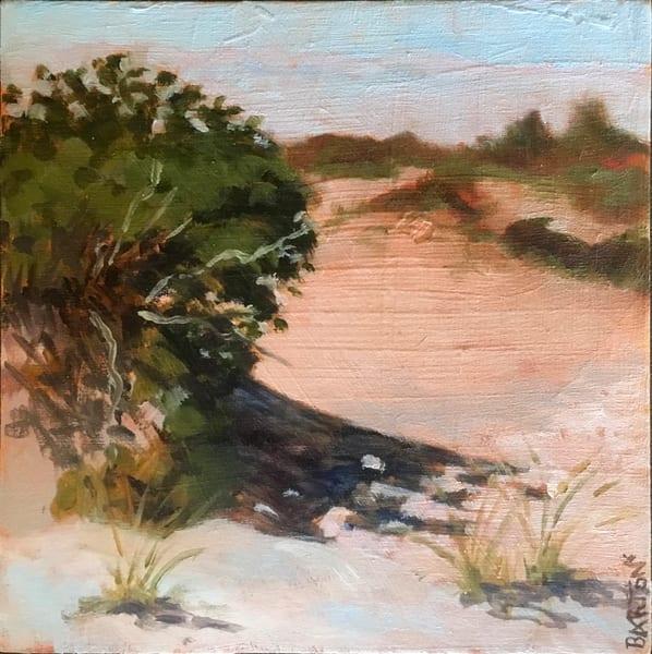 beach, dunes, LBI