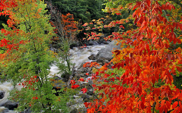 Autumn On The Ausable Photography Art | Michael Sandy Photography