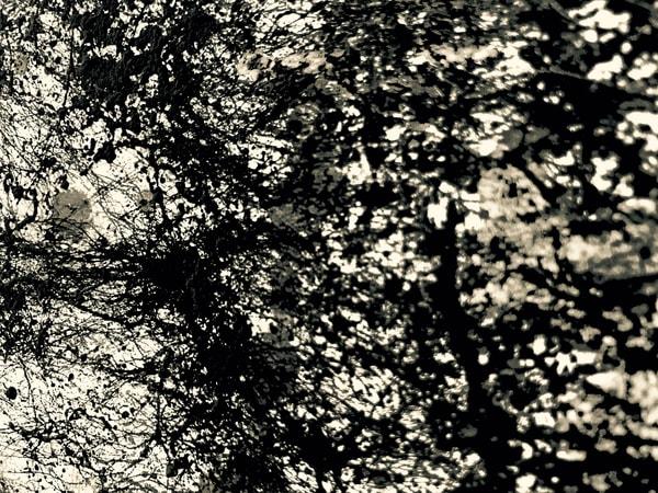 Odeta Xheka Visuals   Jackson Pollock inspired floral art prints