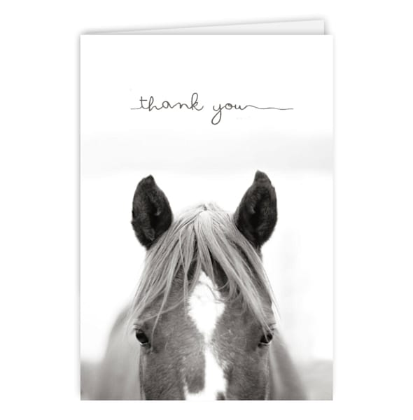 BLACK AND WHITE HORSE THANK YOU CARD