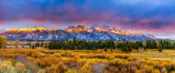88 A0122 Pano Final Grand Tetons Photography Art | Curtis Peters Photography