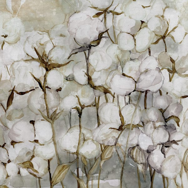 Cotton Field by artist Carol Robinson Wrapped Canvas Painting Art Print