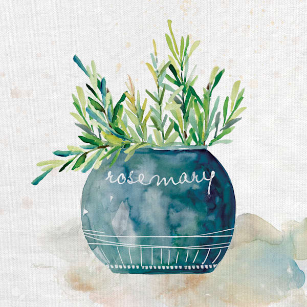Potted Rosemary by Artist Carol Robinson Wrapped Canvas Painting Art Print