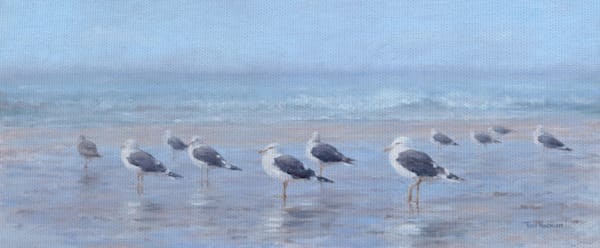 Seabirds by Artist Tony Hinchcliffe Wrapped Canvas Art Painting Print