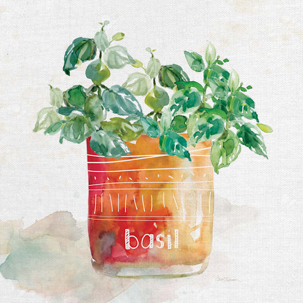Potted Basil by Artist Carol Robinson Wrapped Canvas Painting Art Print