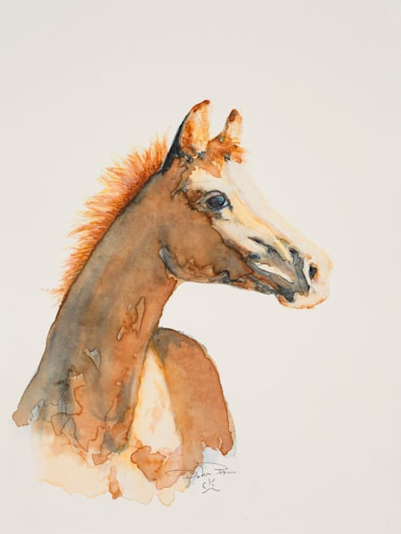 Arabian Phillies Watercolor Painting