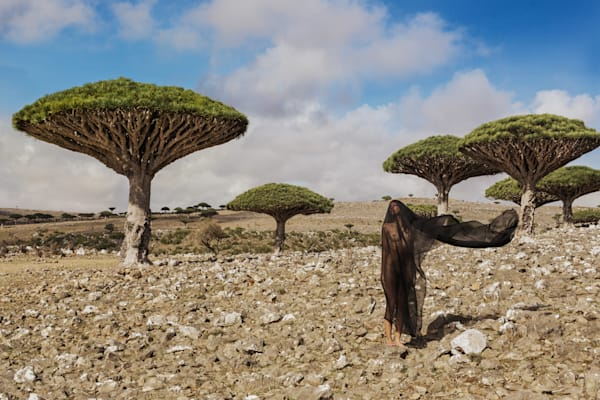 Salvation of Socotra