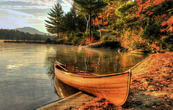 Autumn Shoreline On Lake George Photography Art | Michael Sandy Photography