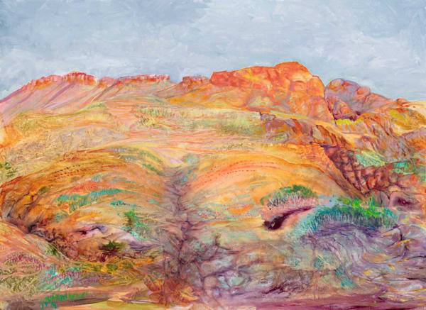Spring afternoon in the Arkaroola Hills