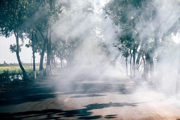 Burn Haze