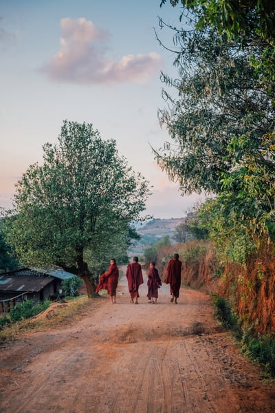 Fine Art Prints, The Look Back, Monks in Burma