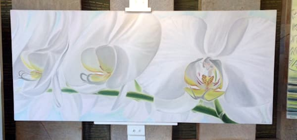 White Orchids Art | R  O  B  E  N  A