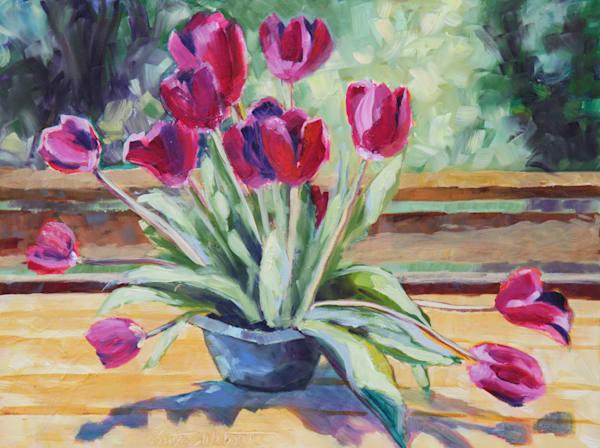Sunning Tulips