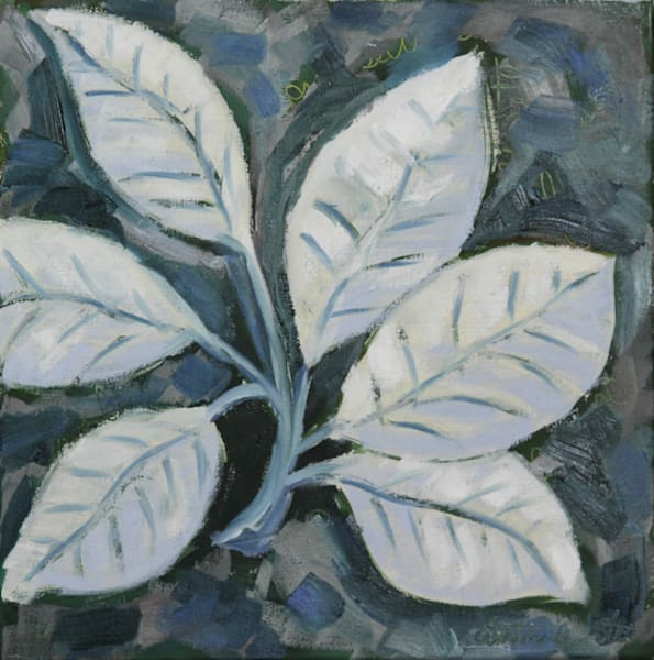 Leaves in White