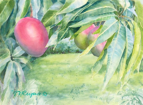 Mango Garden Art for Sale