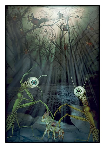 The Forest at Night Card