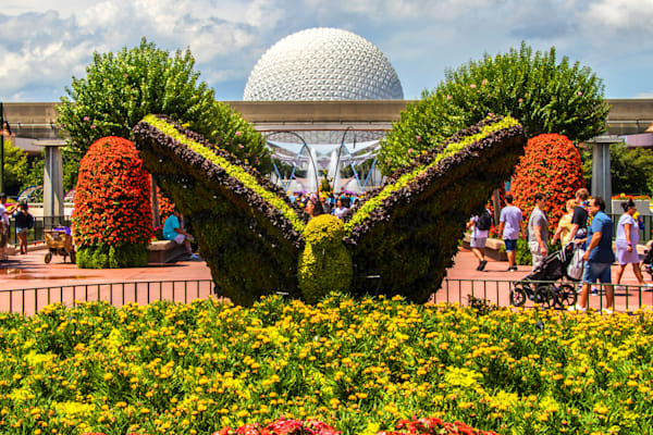 Topiary Butterfly and Spaceship Earth - Epcot F&G Gallery | William Drew