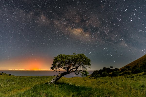 Hawaii Lava Photography | Mauna Kea Tree View of the Eruption by Peter Tang
