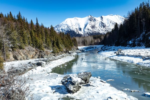 Alaska, winter, stream, bird creek