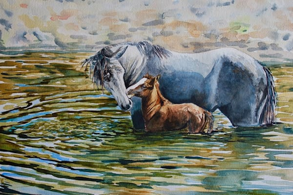 Watercolor Equine Art - Morning Ablution by Misty Biros