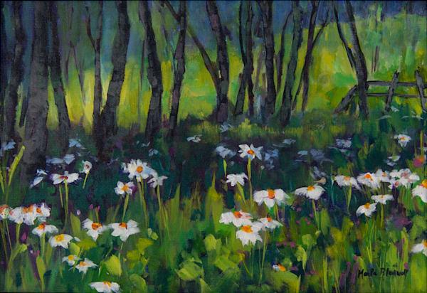 Panorama Wild Flowers