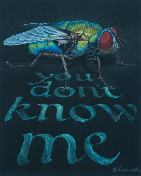 You Don't Know Me colored pencil art by Louise Waller