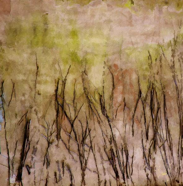 Fine Art Paintings-Sticks And Stones
