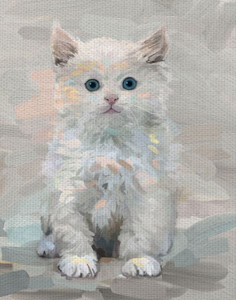 Pretty Kitty III by Studio Arts Wrapped Canvas Art Print