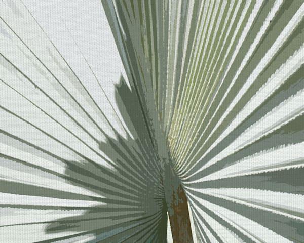 Palm Frond II by artist Noah Bay Canvas Art Print