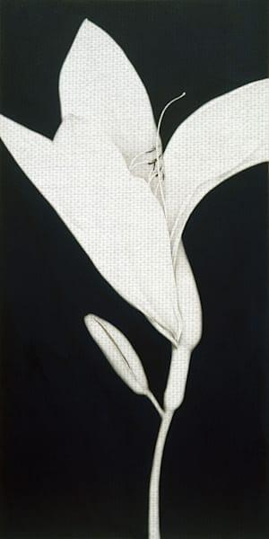 Cycle Upright by artist Sang-Geun Cho Canvas Art Print