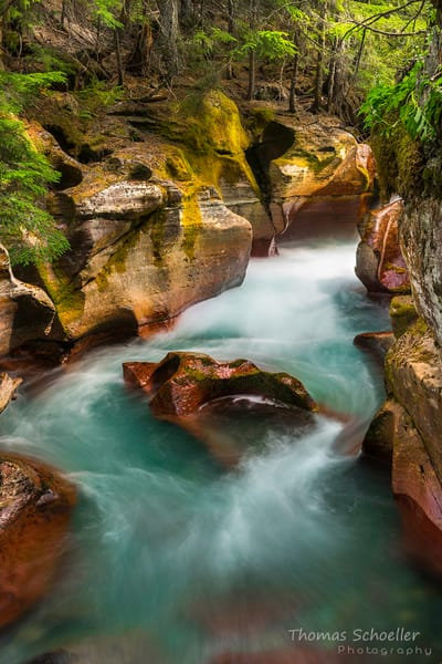 Avalanche Creek-Trail of the Cedars/Fine Art photography pieces by Thom Schoeller