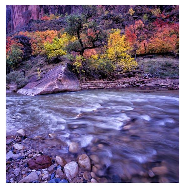 Autumn in Zion original darkroom photograph by Richard Stefani