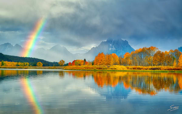 Fall Spectrum - Grand Teton National Park