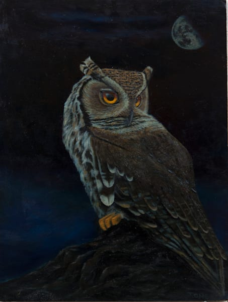 "Night Owl (16"" x 20"") 800 hrs."
