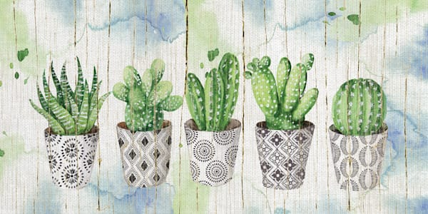 Potted Succulents on Wood by Artist Elena Vladykina Wrapped Canvas Painting Art Print
