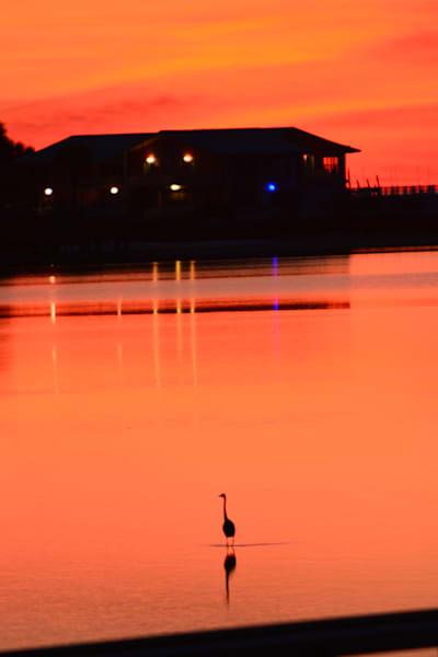 Cedar Key Sunset Art | Roost Studios, Inc.